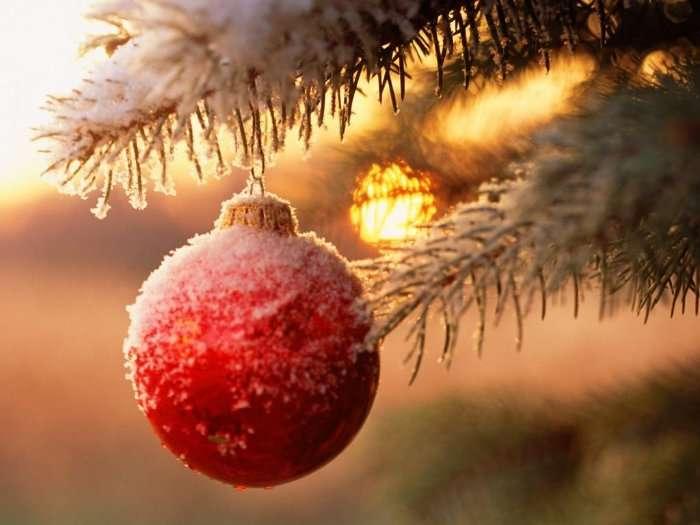 Новогоднее желание Аленки
